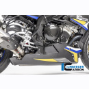 Belly panr S 1000 R (2017-) - carbon